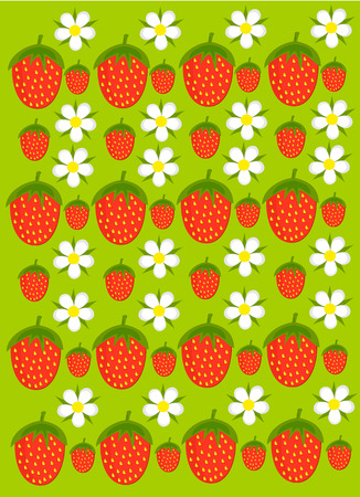 Colorful strawberry background - fruits and flowers in garden Vector
