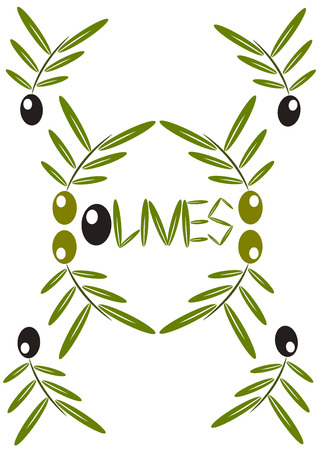 Olives background - olive tree branches with green and black fruits Vector