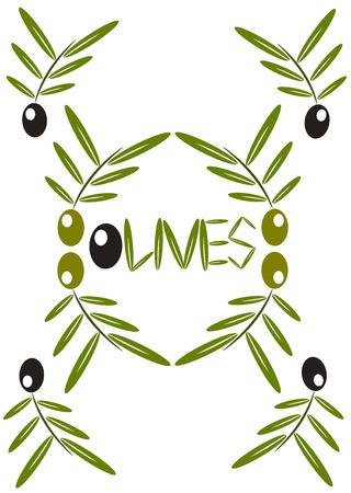 aceite de oliva virgen extra: Ramas de �rboles de fondo - aceite de oliva de aceitunas con frutas verdes y negras