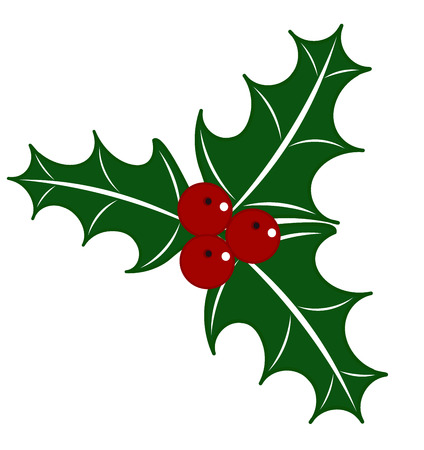 seasonal symbol: Holly berry  illustration - Christmas symbol
