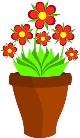 claret: Red claret flowers in flower pot. illustration