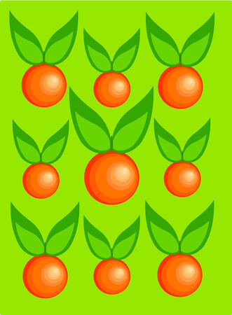 Fresh oranges with leaves over green background. Three different sizes.  Vector