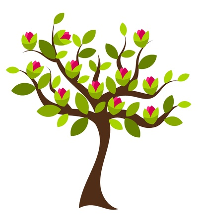 vida natural: Árbol de magnolia hermosa con grandes flores rosas. Ilustración vectorial Vectores