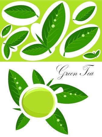 chinese tea cup: Blanco taza de t� verde y t� fresco deja a fondo. Ilustraci�n vectorial