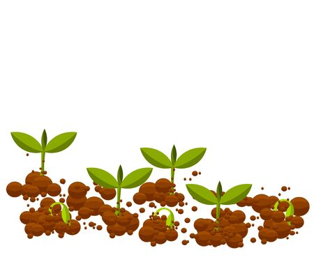 unfolding: Small germinal plants growing from soil. Vector illustration Illustration