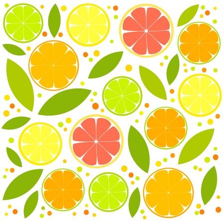fruity: Citrus background  - orange, lemon, lime slices and leaves illustration