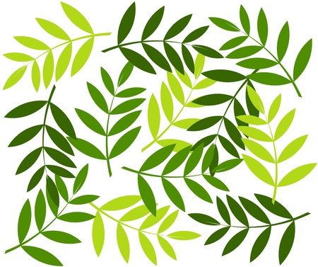 Green leaves background. Vector illustration