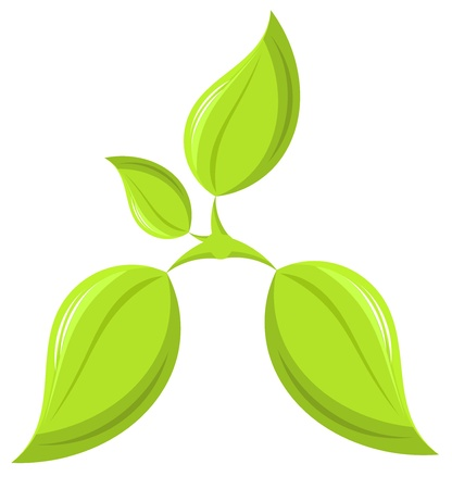 Young fresh spring plant - ecology concept. Vector illustration Stock Vector - 9481754