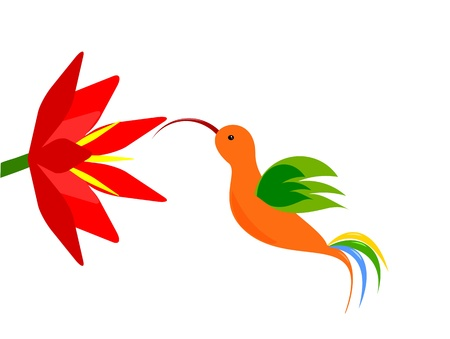 Colorful hummingbird flying to red flower