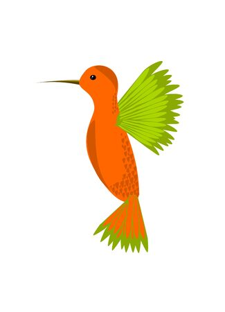 hover: Colorful orange and green hummingbird