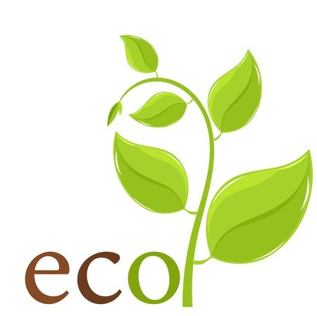 original ecological: Fresh spring plant. Ecological emblem - vector illustration Illustration