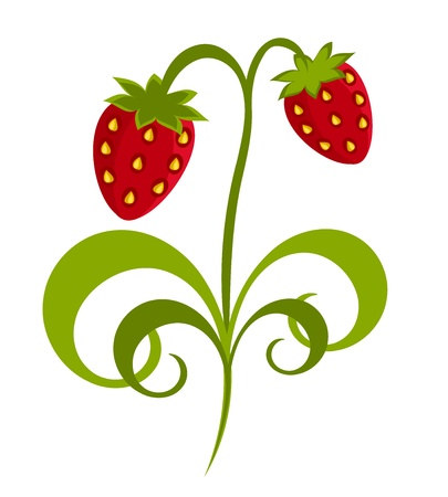 Abstract fantasy strawberry plant Vector