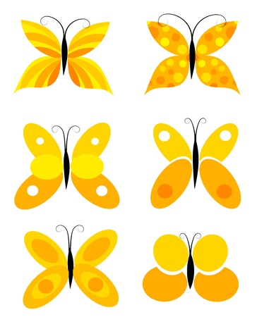 Orange colorful butterfly collection Vector