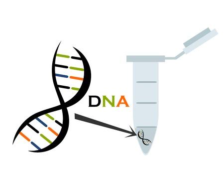 biologia molecular: ADN en eppendorf de tubo de ensayo. Ciencia de la biolog�a molecular. Ilustraci�n vectorial