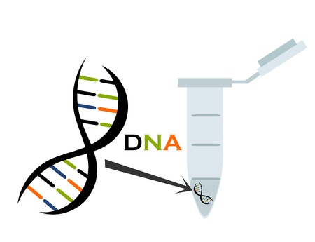 dna structure: DNA in test tube eppendorf. Molecular biology science. Vector illustration
