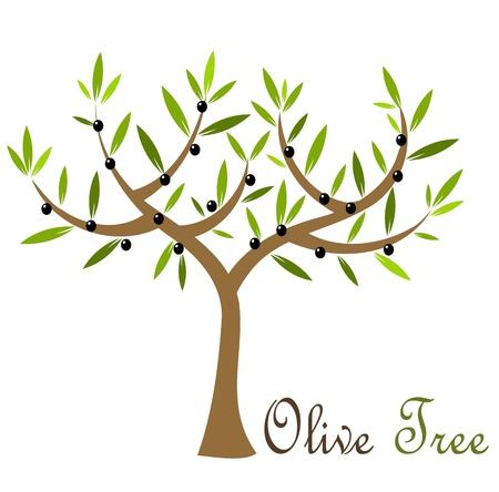 olijf: Olijf boom met zwarte olijven. Vector illustratie