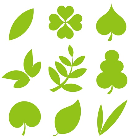 clover leaf shape: Set od various tree leaves. Vector illustration
