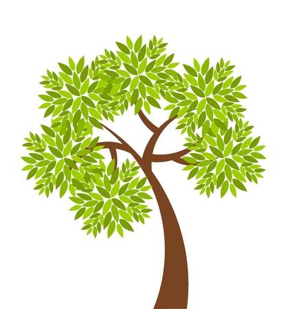 vida natural: Árbol simbólico con solo simple hojas ilustración vectorial Vectores