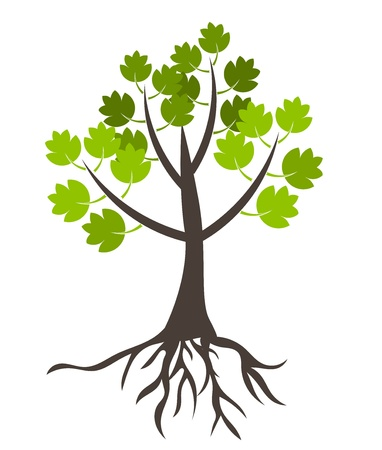 Tree with roots - vector illustration Vector
