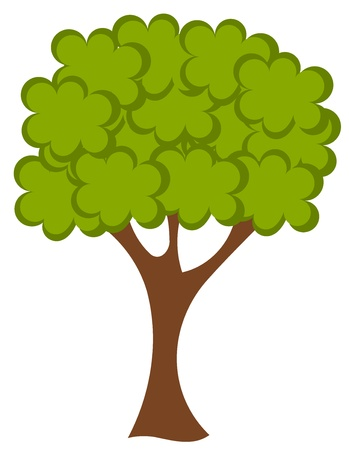 oak wood: Big green tree vector illustration Illustration