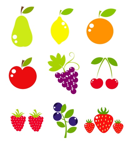 purple grapes: Various fruits collection - vector illustration Illustration