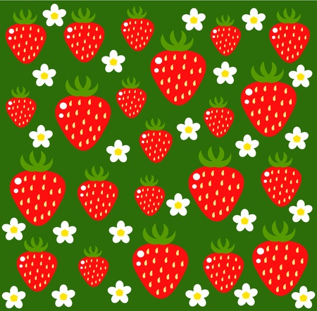 Strawberry background - flowers and fruits Vector