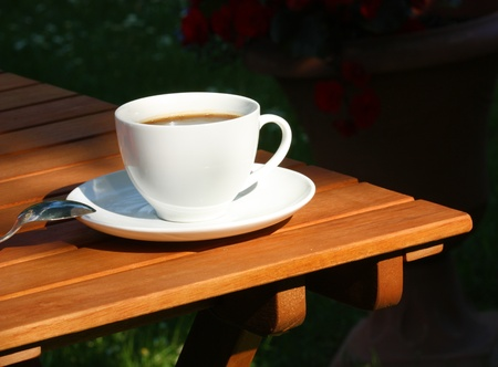 gillyflower: White coffee cup on wooden garden table