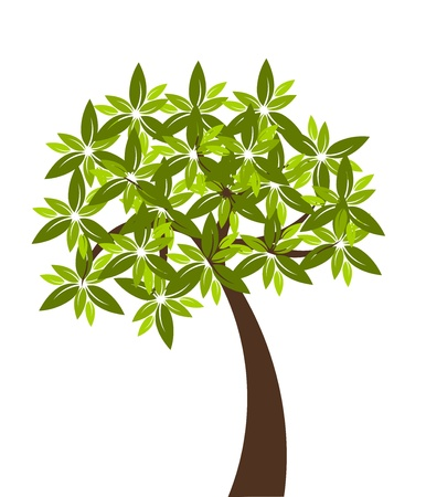 Tree isolated over white Stock Vector - 10491820