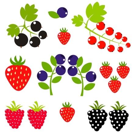 wild strawberry: Set of fruit berries.  Illustration