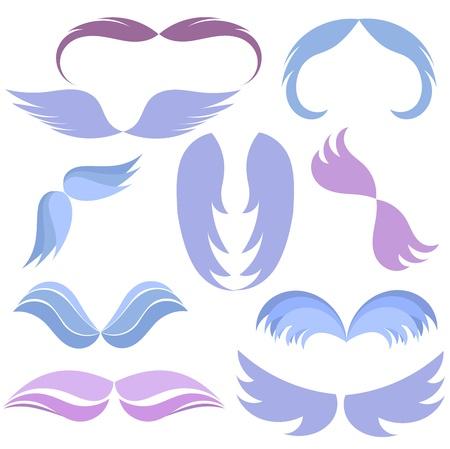 spread: Set of  wings