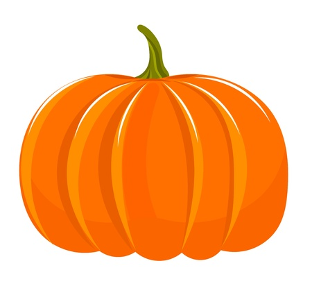 Pumpkin illustration isolated over white 向量圖像