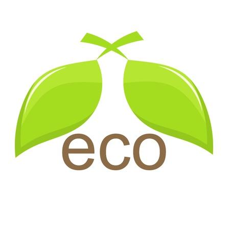 eco logo: Ecological emblem with green leaves. Vector illustration Illustration