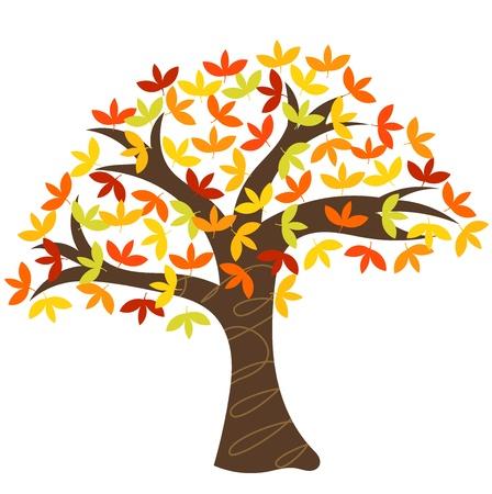 fall trees: Spreading autumn old tree. Isolated vector illustration Illustration