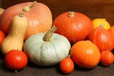 Group of various pumpkins