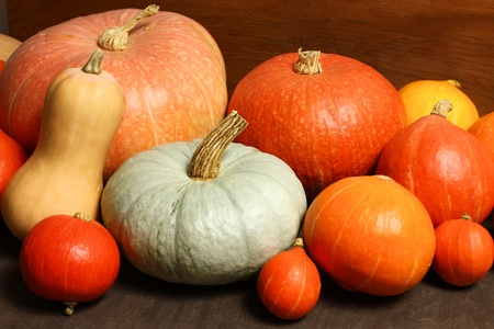 large pumpkin: Group of various pumpkins