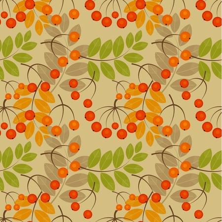 rowan: Rowan berry seamless texture. Autumn vector illustration Illustration