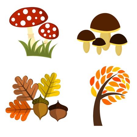 toadstool: Elementi di autunno per la progettazione. Vector illustration