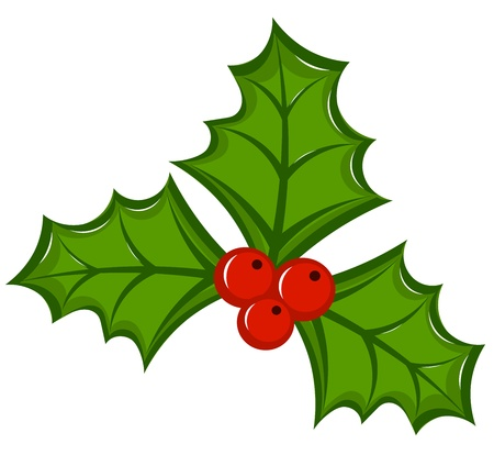 ilex: Holly berry illustration