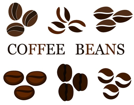 Coffee beans various kinds in collection. illustration Vector
