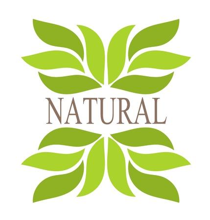 대칭: 자연 녹색 테두리 잎. 삽화