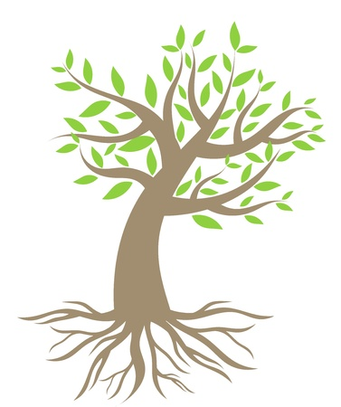 plant roots: Albero con radici. Vector illustration