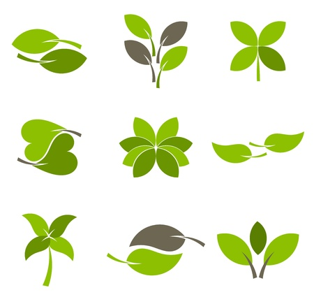 leaves vector: Green leaves - collection of eco logos. Vector illustration