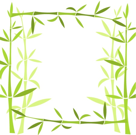 lucky plant: Bamboo frame. Vector illustration