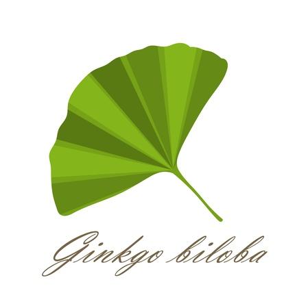 Ginkgo leaf symbol - vector illustration Ilustração