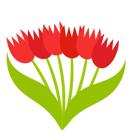 Red tulips bouquet. Vector illustration Vector