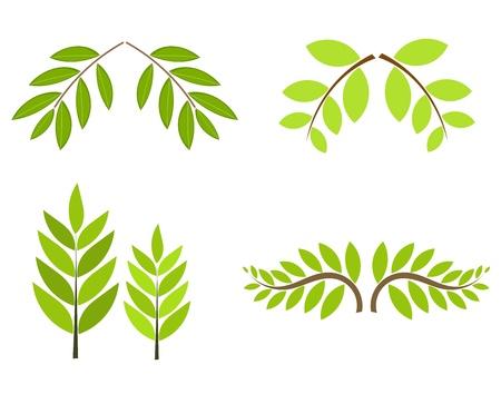 Ramas de los árboles con la recopilación de hojas verdes aisladas. Ilustración vectorial Ilustración de vector