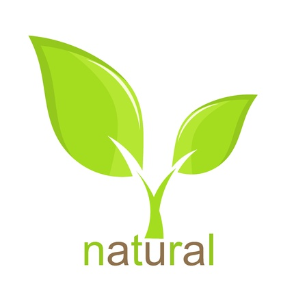Green leaf natural icon. Vector illustration