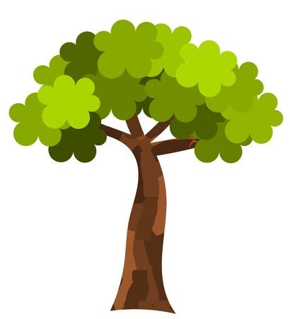 Plane tree. Vector illustration