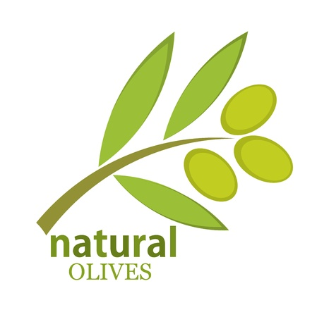 Olive branch logo. Vector illustration Vector