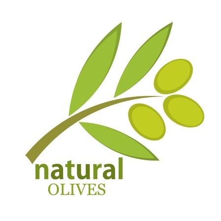 twig: Olive branch logo. Vector illustration